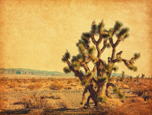 Landscape Of The Desert With B...