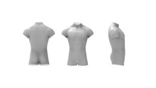3d Rendering Of A Male Torso Isolated In White Background