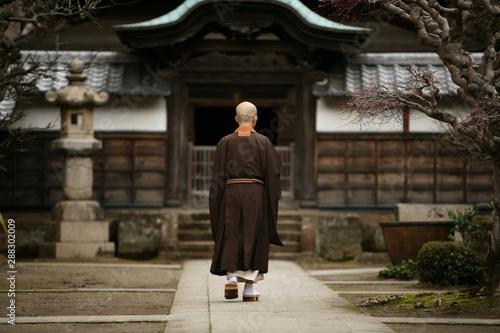 Fototapeta Japonia   mnich-na-dziedzincu-klasztoru-w-kamakura-w-japonii