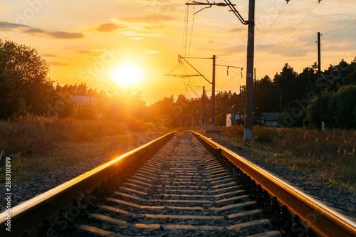 Photo sur Toile Voies ferrées Empty railway track in sunny summer sunset