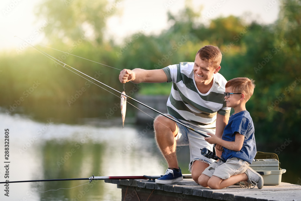 Fototapety, obrazy: Dad and son fishing together on sunny day