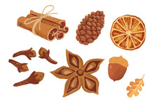 Set Of Hand Drawn Spices: Cinnamon Sticks, Cloves, Anise Star, Oak Leaf, Acorn. Autumn Pumpkin Spice Set Isolated On White Background.