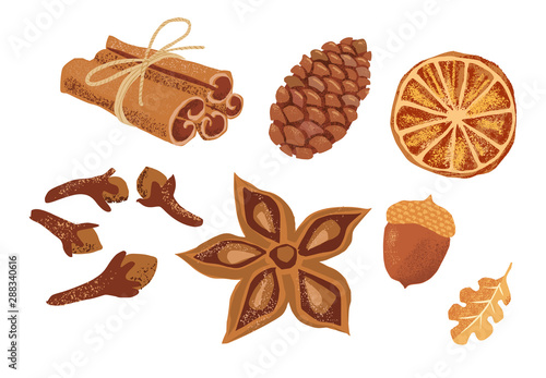 Fototapeta Set of hand drawn spices: cinnamon sticks, cloves, anise star, oak leaf, acorn. Autumn Pumpkin Spice set isolated on white background. obraz