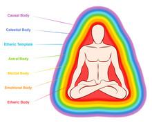 Aura Bodies. Rainbow Colored L...