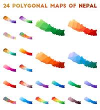 Set Of Vector Polygonal Maps O...