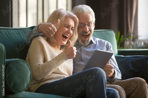 Fotografie, Obraz  Grey-haired happy mature couple celebrating together online win.