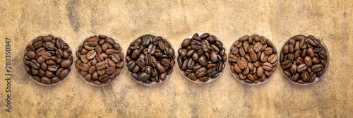 variety of coffee beans from different parts of the world Wallpaper Mural
