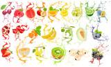 Fruit Splash Collection