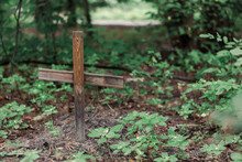A Small Grave With A Wooden Cross. Pet Cemetery In The Forest