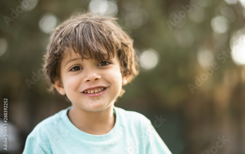 Fotografie, Obraz  little three years old boy portraits in summer afternoon