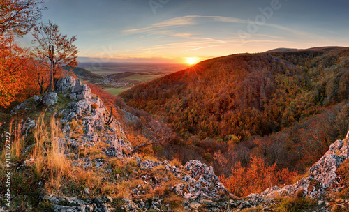 Obraz Beautiful orange and red autumn forest mountain, many trees on the orange hills, Slovakia - fototapety do salonu