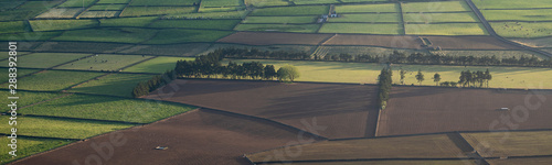 Obraz Aerial view on abstract pattern of fields at Serra do Cume and Serra da Ribeirinha before or after sunset or sunrise with low light shadows over the walled plots of land, Terceira - fototapety do salonu