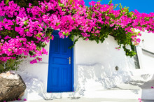 White Cycladic Architecture With Blue Door And Pink Flowers Of Bougainvillea On Santorini Island, Greece.