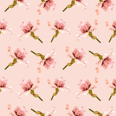 Fototapeta Kwiaty Floral seamless pattern with pink iris. Flowers isolated on soft light background. Can be used for wallpaper design, packaging, textile, decorative print.
