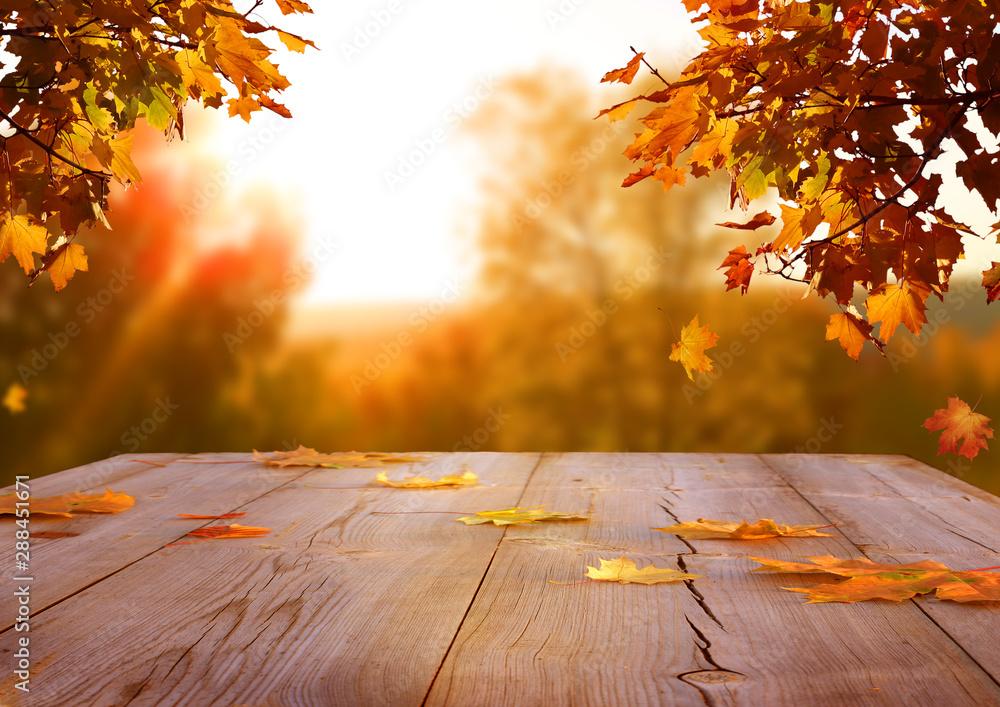 Fototapeta Autumn maple leaves on wooden  table.Falling leaves natural background.