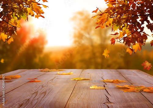 Photo sur Aluminium Arbre Autumn maple leaves on wooden table.Falling leaves natural background.