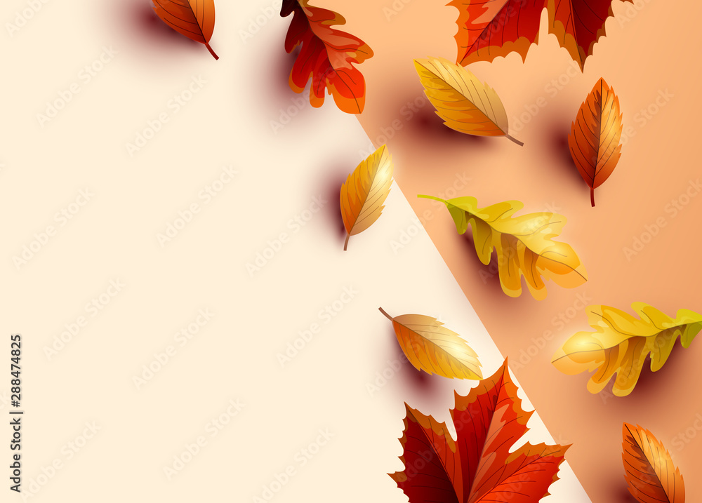 Fototapety, obrazy: Autumn themed background with colourful leaves, vector illustration.