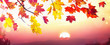 canvas print picture Autumn Leaves Fall At Sunset