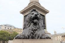 Colonne Nelson à Trafalgar Square, Construite En 1843 En L'honneur De L'Amiral Horatio Nelson, Londres, Royaume Uni