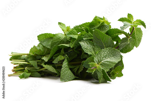 Photo  A bunch of fresh mint. Isolated. White background.