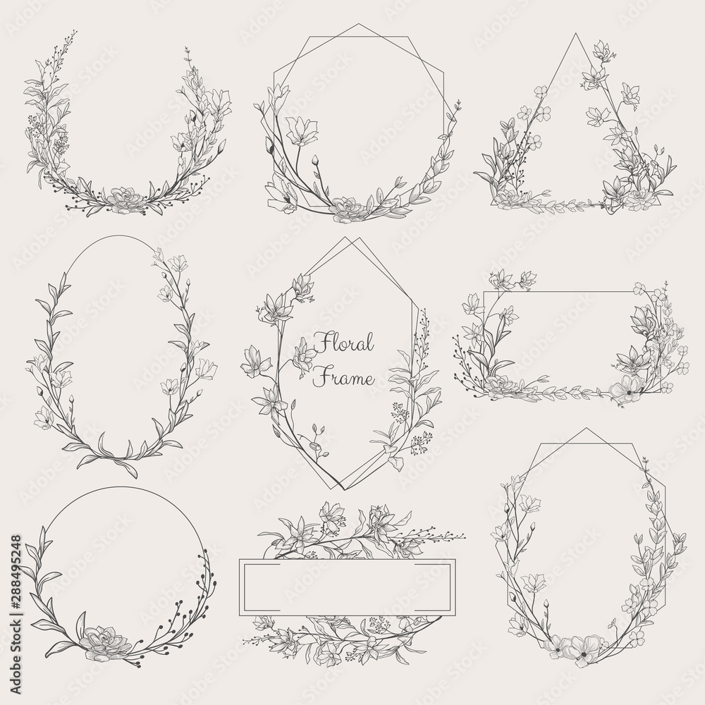 Fototapeta Collection of geometric vector floral frames. Round, oval, triangle, square Borders decorated with hand drawn delicate flowers, branches, leaves, blossom. illustration