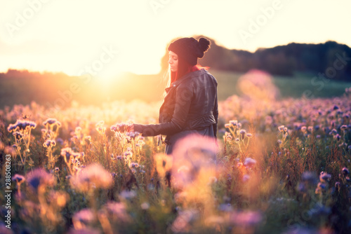Junge Frau im gegenlichtigen Phacelia Blumenfeld Fototapet
