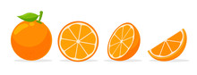 Citrus Fruits That Are High In...