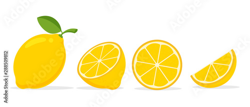 Fototapeta Yellow lemon vector. Lemon is a fruit that is sour and has high vitamin C. Helps to feel fresh. obraz