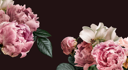 Fototapeta Peonie Floral banner, flower cover or header with vintage bouquets. Pink peonies, white roses isolated on black background.