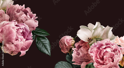 Poster de jardin Fleur Floral banner, flower cover or header with vintage bouquets. Pink peonies, white roses isolated on black background.