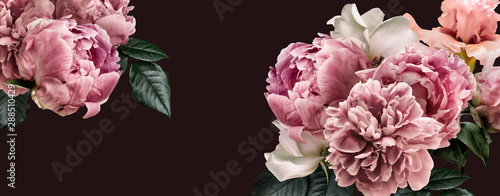 Fotobehang Bloemenwinkel Floral banner, flower cover or header with vintage bouquets. Pink peonies, white roses isolated on black background.