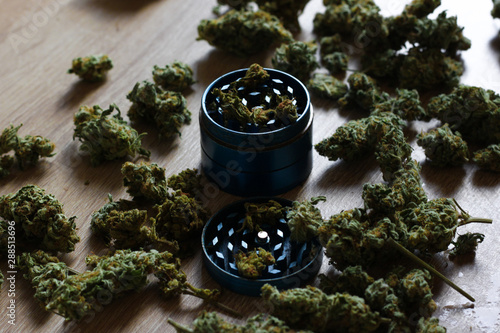 Cannabis buds on wood table, grinder with fresh marijuana Fototapet