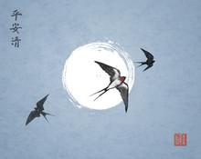 Three Swallow Birds On Night S...