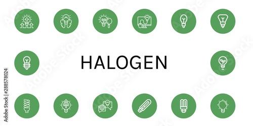 Obraz Set of halogen icons such as Lightbulb, Light bulb , halogen - fototapety do salonu