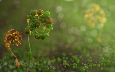 Fresh green and yellow fantastic wild plant on a medow close-up macro with bokeh 3d render. Spring or summer background