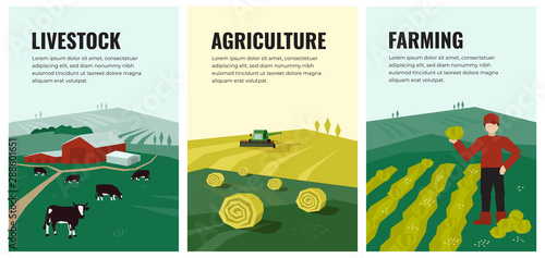 Obraz Set of vectors with agriculture, farming, livestock, harvest. Illustrations of hayfield, haystack rolls, farm animals, cows in pasture, combine harvester, farmer on field. Template for banner, poster. - fototapety do salonu
