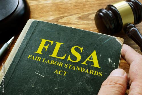 Man holds FLSA fair labor standards act. Canvas Print
