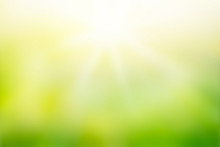 Sunlight With Abstract Blurred Green Nature Background