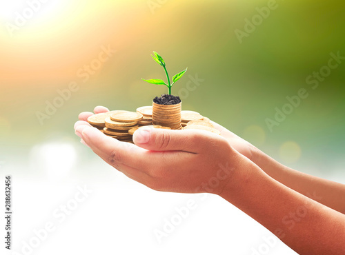 Fotografie, Obraz  Pension fund concept: Human hands save holding stack of golden coin with small t