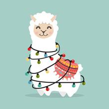 Llama Alpaca  Fluffy With Ligh...