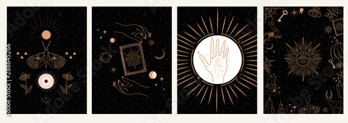 Fototapeta Collection of mystical and mysterious illustrations in hand drawn style. Skulls, animals, space objects, magic ball, crystals, hands. Minimalistic objects made in the style.  obraz