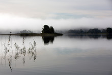 Misty Autumn Morning. An Island In The Middle Of A River In The Fog. The Reeds In The Foreground. Reflection In Water.