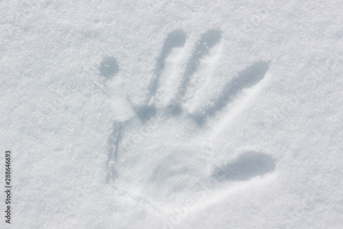 Obraz na plátně Human handprint in the snow