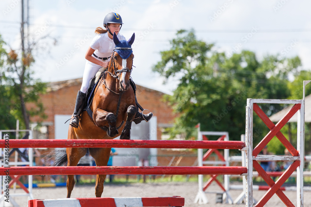 Fototapety, obrazy: Horse rider woman on show jumping competition