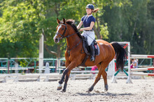 Young Female Horse Rider On Eq...