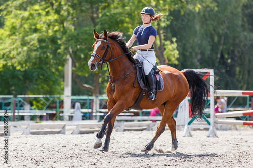 Young female horse rider on equestrian sport event Fototapeta
