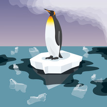 Penguin With Plastic Garbage In The Water