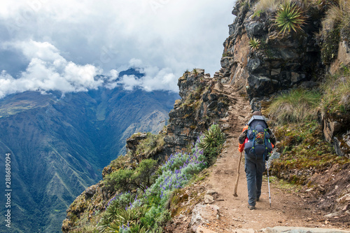 Obraz Young hiker man trekking with backpack in Peruvian Andes mountains, Peru, South America - fototapety do salonu