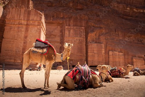 Photo view form red rock and stone carving in Petra city - Wadi Musa - amman - Jordan