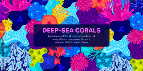 Vector composition of corals Canvas Print